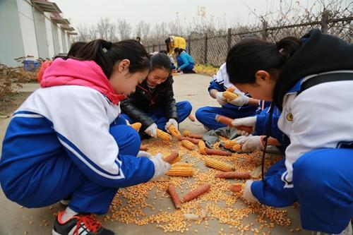 学农实践教育活动